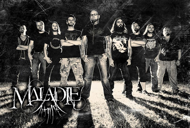 Maladie 2013