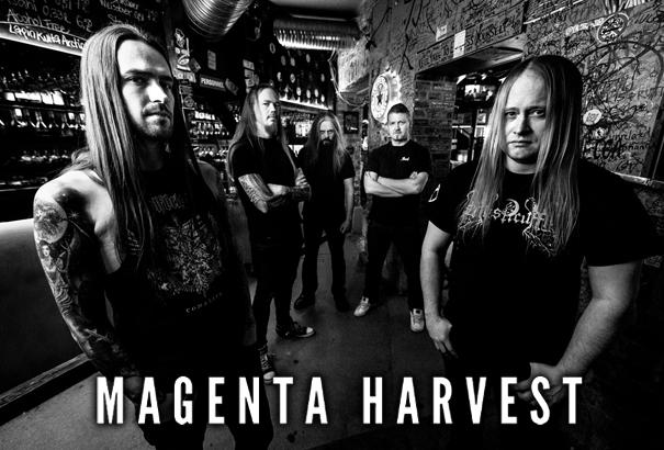 Magenta Harvest Band 17